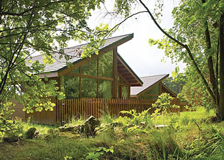 Lodge setting at Cropton Lodges - Self catering accommodation near Pickering