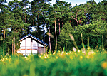 Log cabins at Keldy Forest Lodges - Lodge accommodation near Pickering North Yorkshire