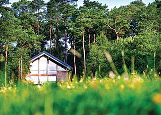 Lodge setting of Keldy Lodges in Cropton Forest near Pickering North Yorkshire