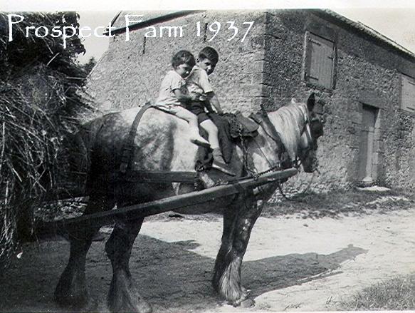 barbara aconley and philip boyes at prospect farm cropton