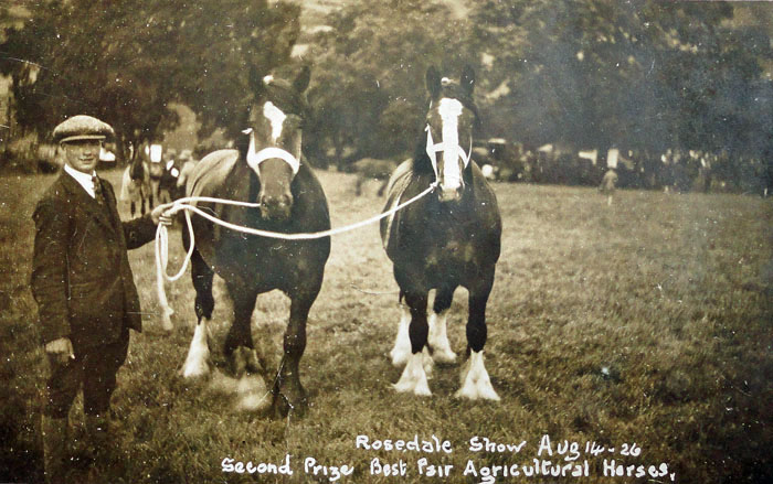 Fred Botham from Cropton with two horses at Rosedale Show 1926