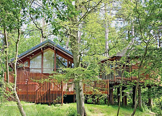 Golden Oak Treehouse at Keldy Holiday Lodges ( Ref LP5574 ) - Lodge accommodation sleeps up to eight guests